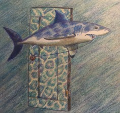 Shark with tooth attached to a door by a string.